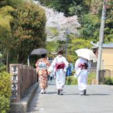 【海外の反応】「映画のようだ!」京都散策の動画を見た外国人の反応