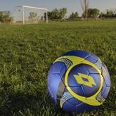 【海外の反応】サッカーをするビーグル犬を見た外国人の反応